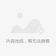 一帆风顺 核舟记 小船 橄榄胡橄榄核雕刻精品